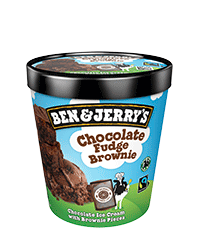 Chocolate Fudge Brownie Original Ice Cream Pinty