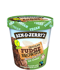 Chocolate Fudge Brownie Non-Dairy Frozen Dessert Pinty