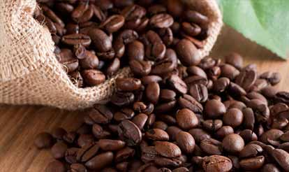 Photo of Coffee Beans